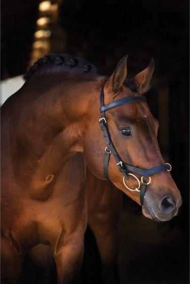 Horseware Rambo Micklem Multi Bridle Black