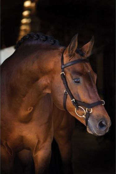 Horseware Rambo Micklem Multi Bridle Brown