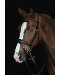 Collegiate Mono Crown Padded Raised Flash Bridle Black
