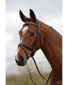 Kincade Padded Crystal Crank Flash Bridle Black
