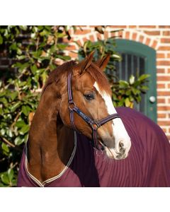 Horseware Amigo Headcollar Fig/Navy & Tan