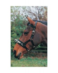 Hy Equestrian Lunge Cavesson - Chelford Farm Supplies