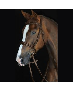 Collegiate Mono Crown Padded Raised Cavesson Bridle Brown