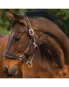 Horseware Rambo Padded Headcollar Witney Gold Stripe