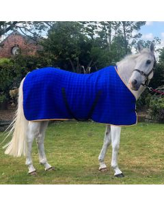 Thermatex Multi-Purpose Quilted Wicking Horse Rug
