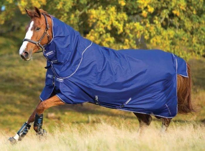 Horseware Amigo Hero 6 Plus Lite 0G Turnout Rug Atlantic Blue