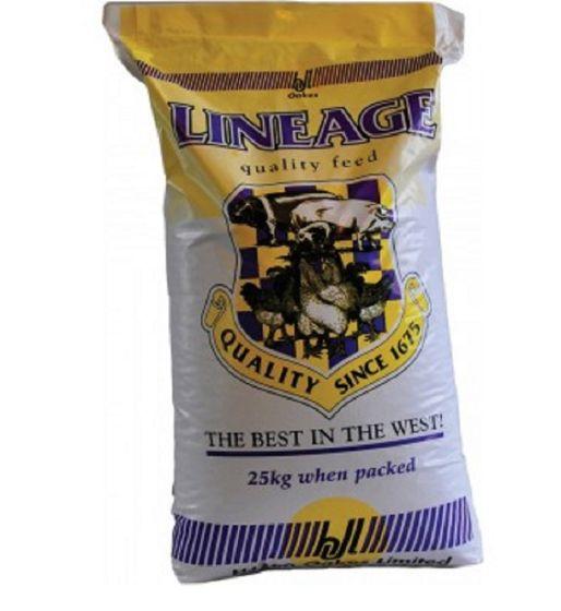 H J Lea Oakes Heritage Pig Finisher No:1 Pellets 20kg