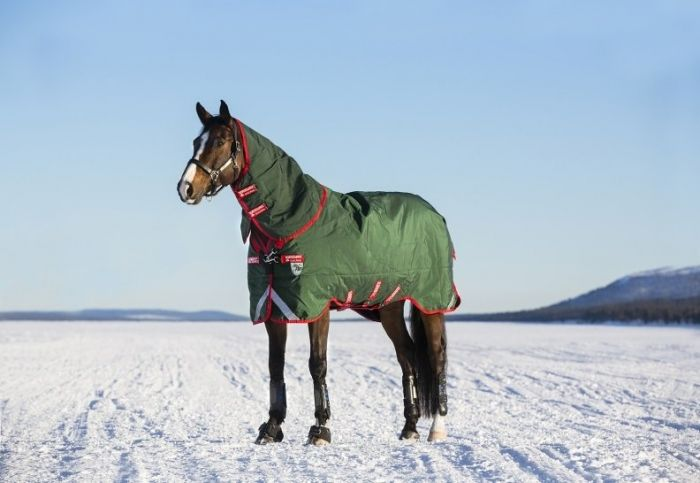 Horseware Limited Edition Rambo Duo Turnout Rug Green / Red