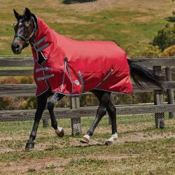 WeatherBeeta ComFiTec Classic Lite Combo Turnout Rug 0g Red