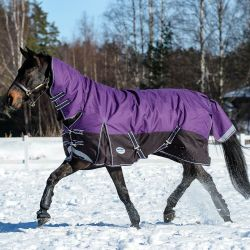 WeatherBeeta ComFiTec Plus Dynamic Heavy Combo Turnout Rug 360g Purple