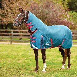 WeatherBeeta ComFiTec Plus Dynamic Heavy Combo Turnout Rug 360g Teal