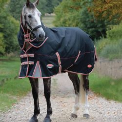 WeatherBeeta ComFiTec Premier Therapy-Tec Medium Turnout Rug 220g Black