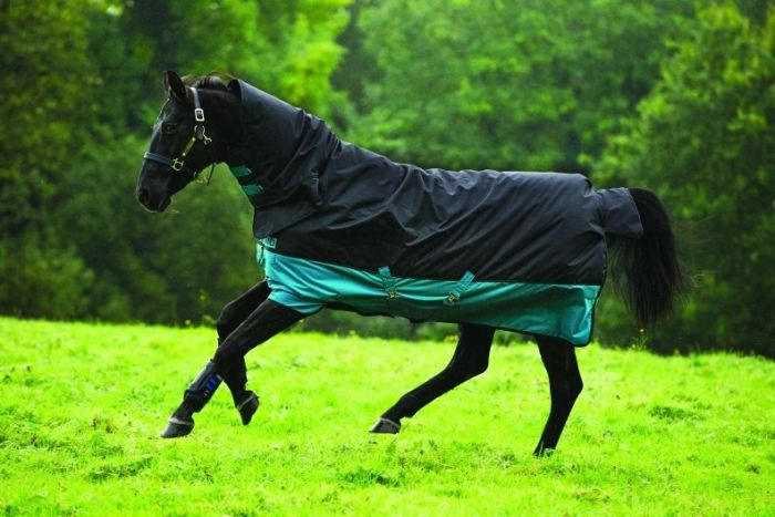 Horseware Mio All-In-One Piece Medium Weight 200G Turnout Rug Black / Turquoise