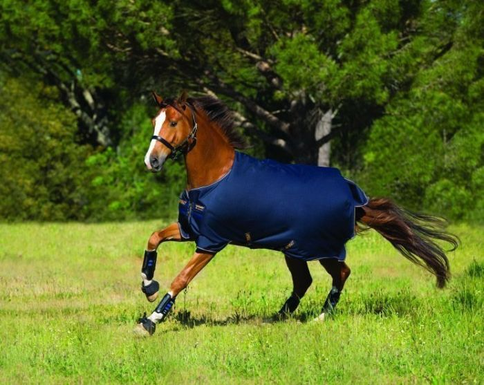 The Horseware Amigo Bravo 12 Original Turnout Lite 100G Rug in Navy