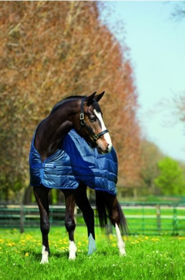 Horseware Liner Medium Weight 200G Navy
