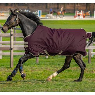 Horseware Amigo Hero Ripstop Lite 0g Turnout Rug Fig/Navy & Tan