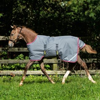 Horseware Amigo Foal Medium Turnout Rug 200g Excalibur/Purple/Yellow