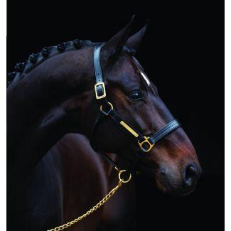 Horseware Amigo Padded Leather Headcollar Black