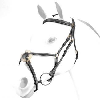 Equipe Emporio Grackle Bridle Brass Fittings - Chelford Farm Supplies
