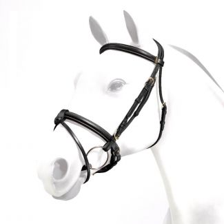Equipe Emporio Rolled Browband Flash Bridle Brass Fittings - Chelford Farm Supplies