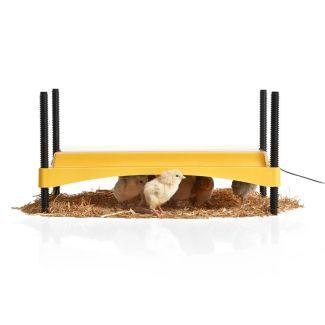 Brinsea EcoGlow Safety 1200 Chick Brooder | Chelford Farm Supplies