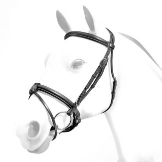 Equipe Emporio Rolled Browband Flash Bridle Silver Fittings - Chelford Farm Supplies