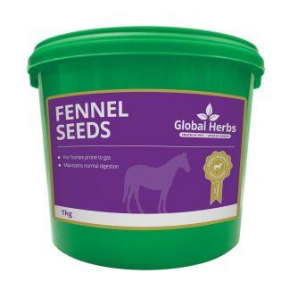 Global Herbs Fennel 1kg - chelford Farm Supplies