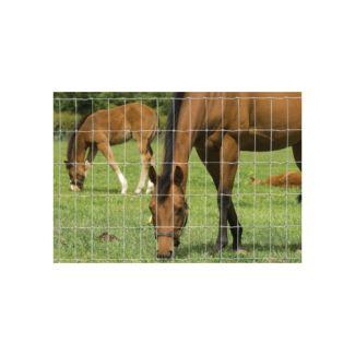 Hampton NET 12/107/7.5 Horse Stock Fencing 50m | Chelford Farm Supplies