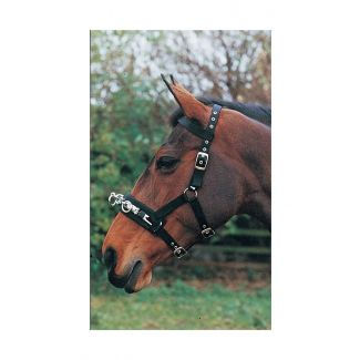 Hy Equestrian Lunge Cavesson - Chelford Farm Supplies