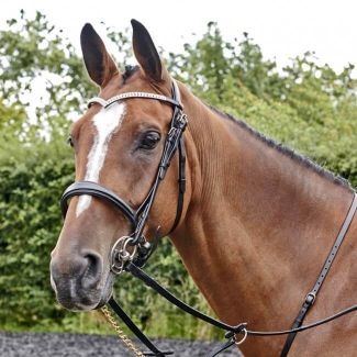 John Whitaker Lynton Snaffle Bridle with Two Browbands - Chelford Farm Supplies
