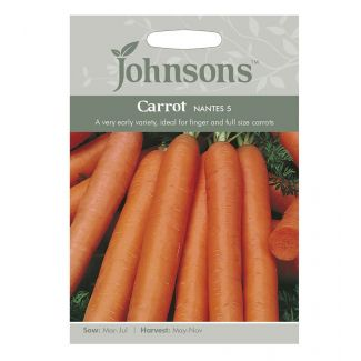 Johnsons Carrot Early Nantes 5 Seeds