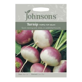 Johnsons Turnip Purple Top Milan Seeds