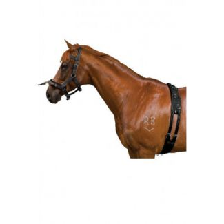 Kincade Equigrip 4 Piece Horse Lunge Kit Black
