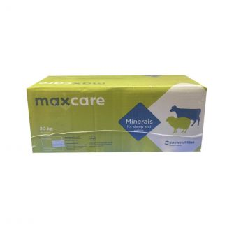 Maxcare Universal Cattle Block (2x10kg) | Chelford Farm Supplies