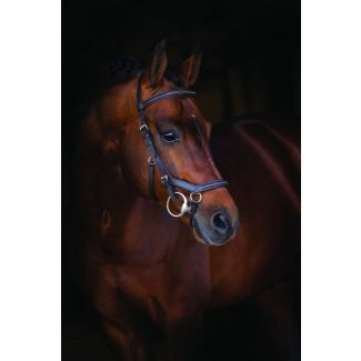 Horseware Rambo Micklem Deluxe Competition Bridle Dark Havana