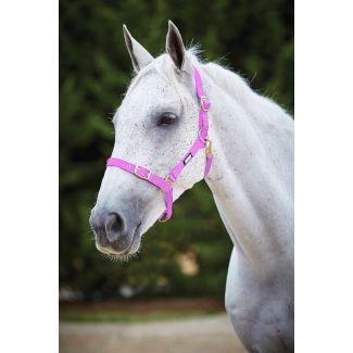 Roma Adjustable Quick Clip Headcollar Pink