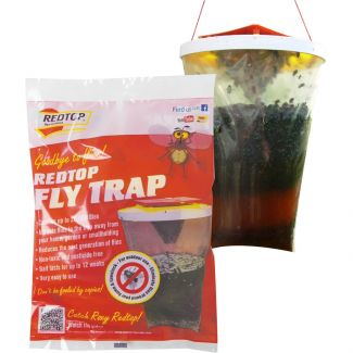 Redtop Flycatcher Fly Trap