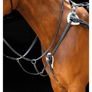 Shires Salisbury Five Point Breastplate Black - Chelford Farm Supplies
