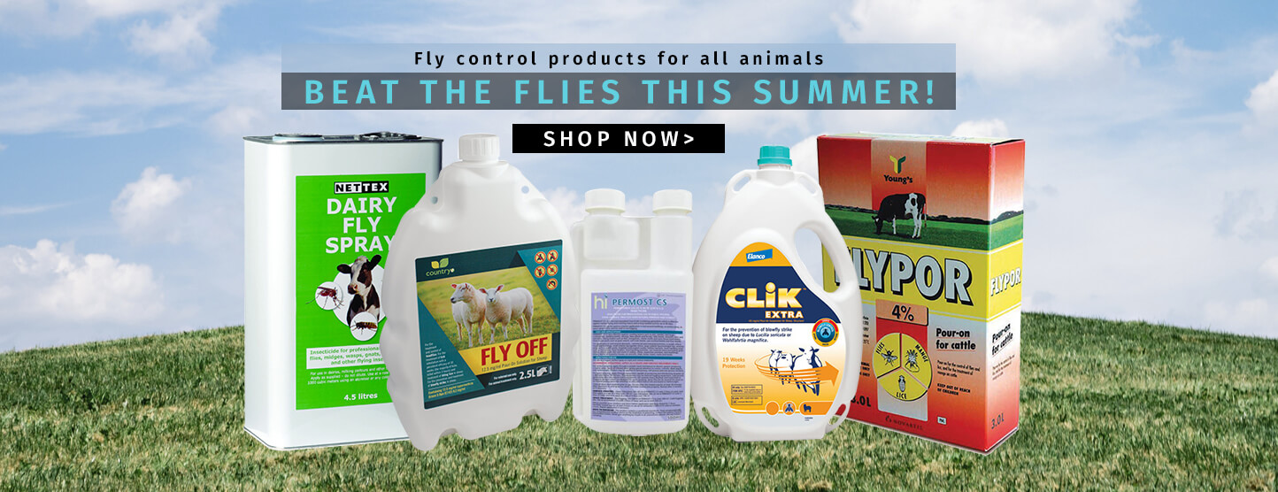 Beat The Flies This Summer