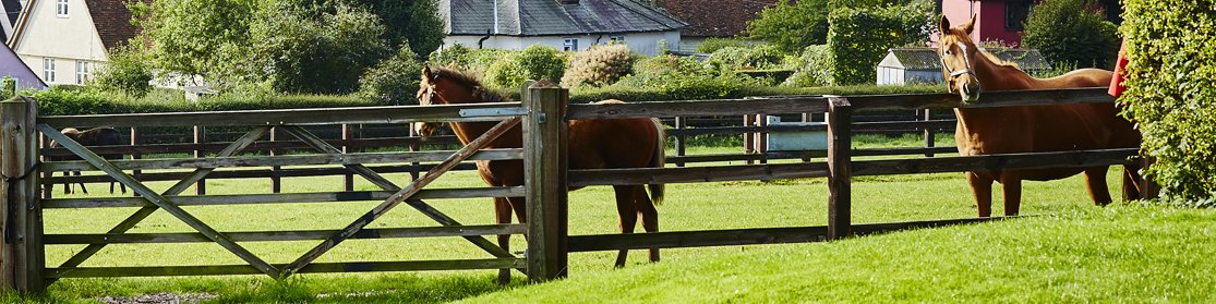 Wooden Fencing from Chelford Farm Supplies
